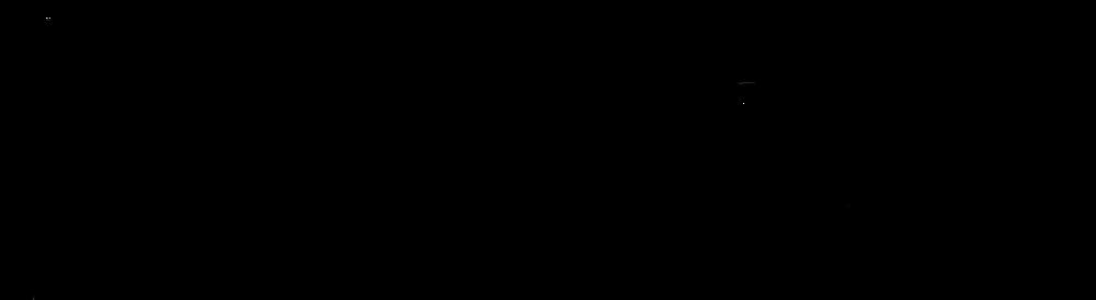 PSE_Logo_4C_Wordmark copy.png