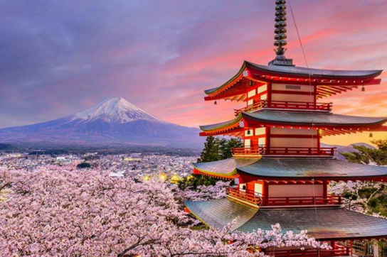 Japan blossoms.jpg