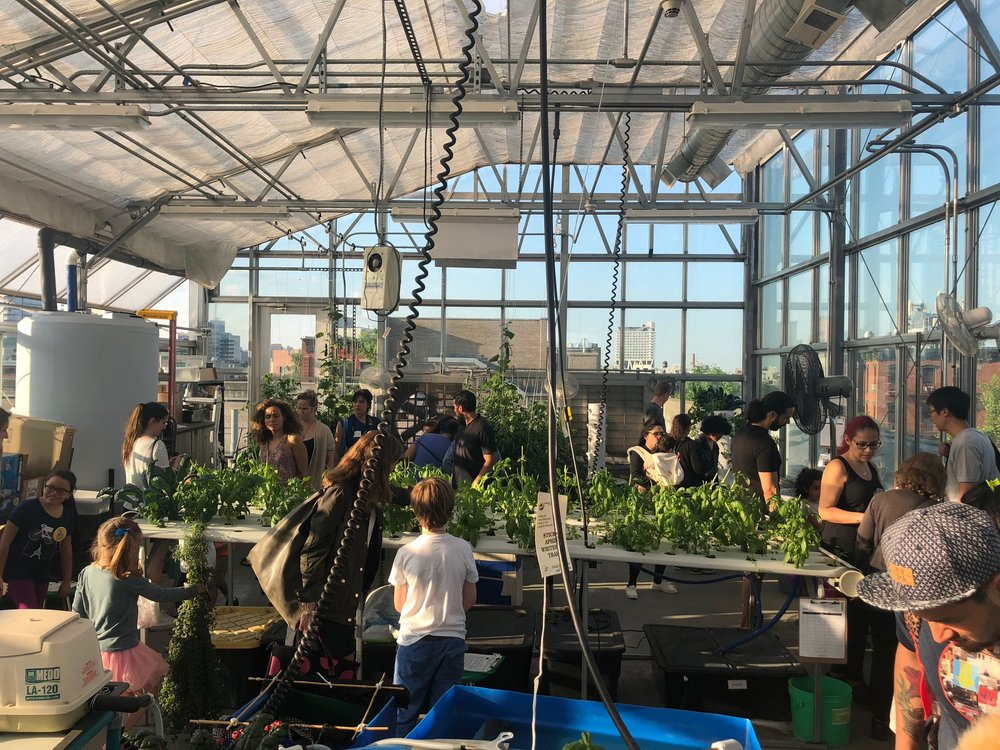 Greenhouse classroom during the Exploratorium 2018