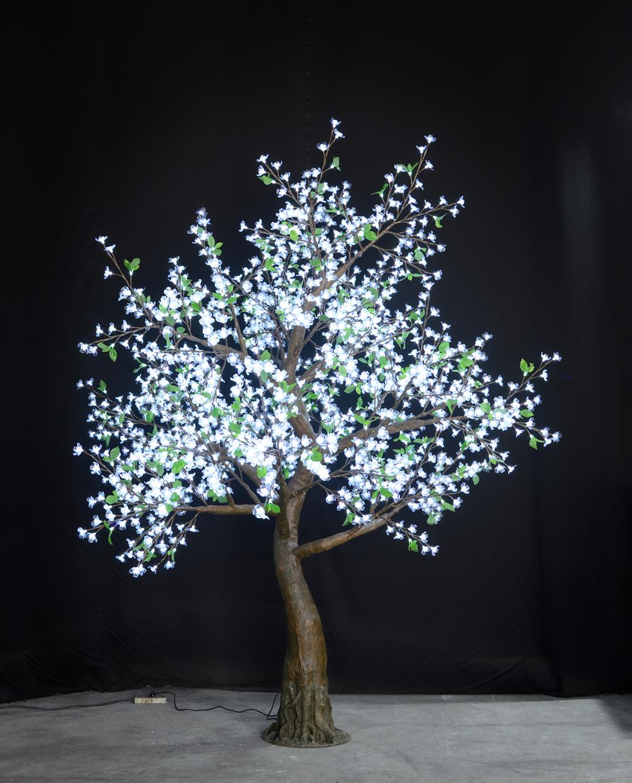 Pure White Flatiron Tree