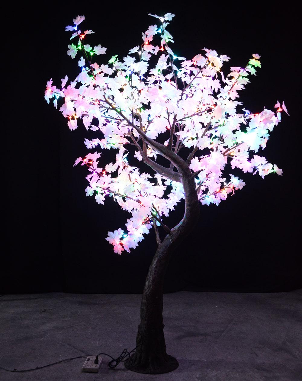 Multi Color Maple Crestone Tree