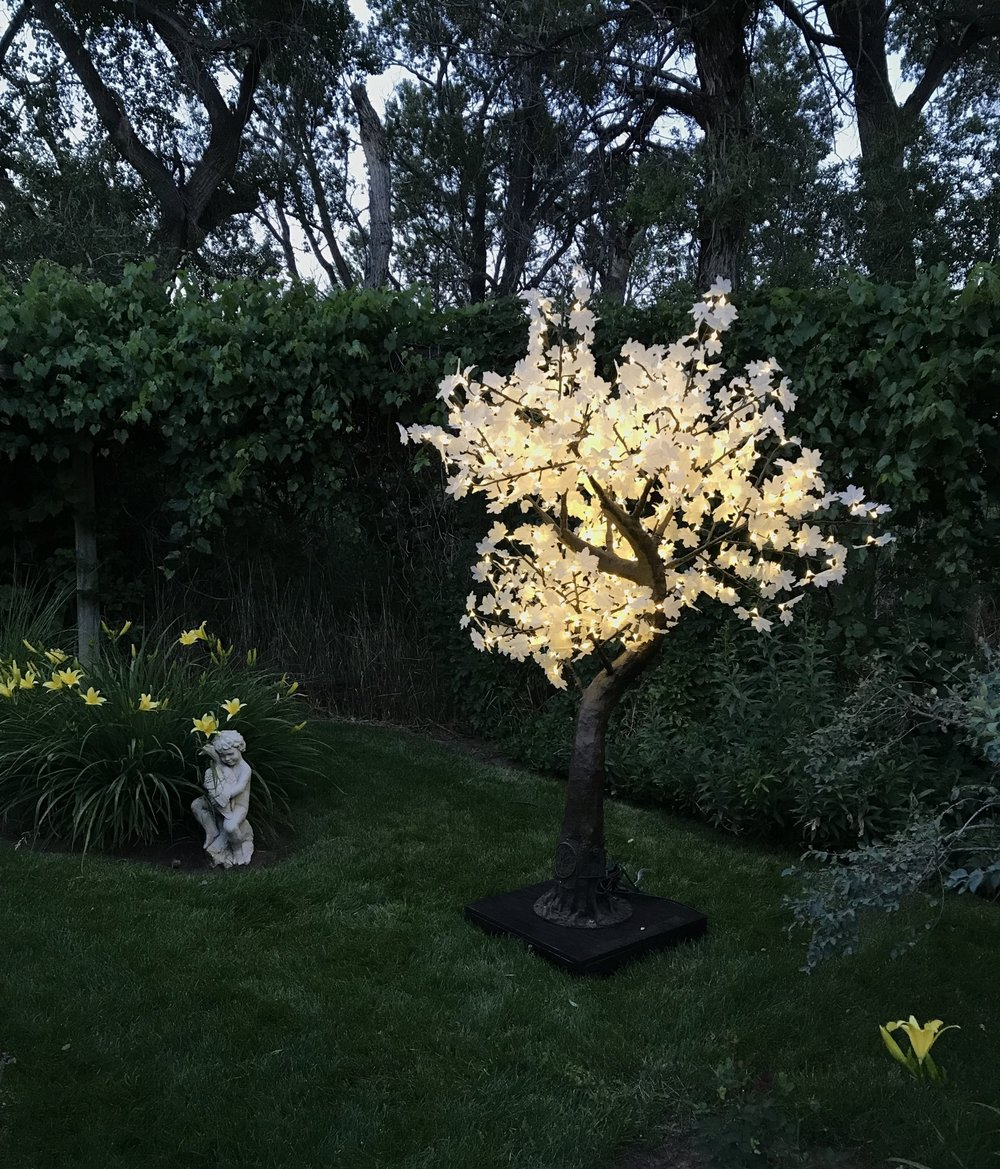 7Ft Crestone     Crestone trees are ideal on a roof terrace or for framing an entrance. They are fitting for both inside and out use and can be dimmed with a dimmer switch if desired.  the tree is 7feet tall and 5feet in diameter. it has 640 leds on 10 branches and is 26 watts.   Available in Warm white only!            Rental Price $295 Each