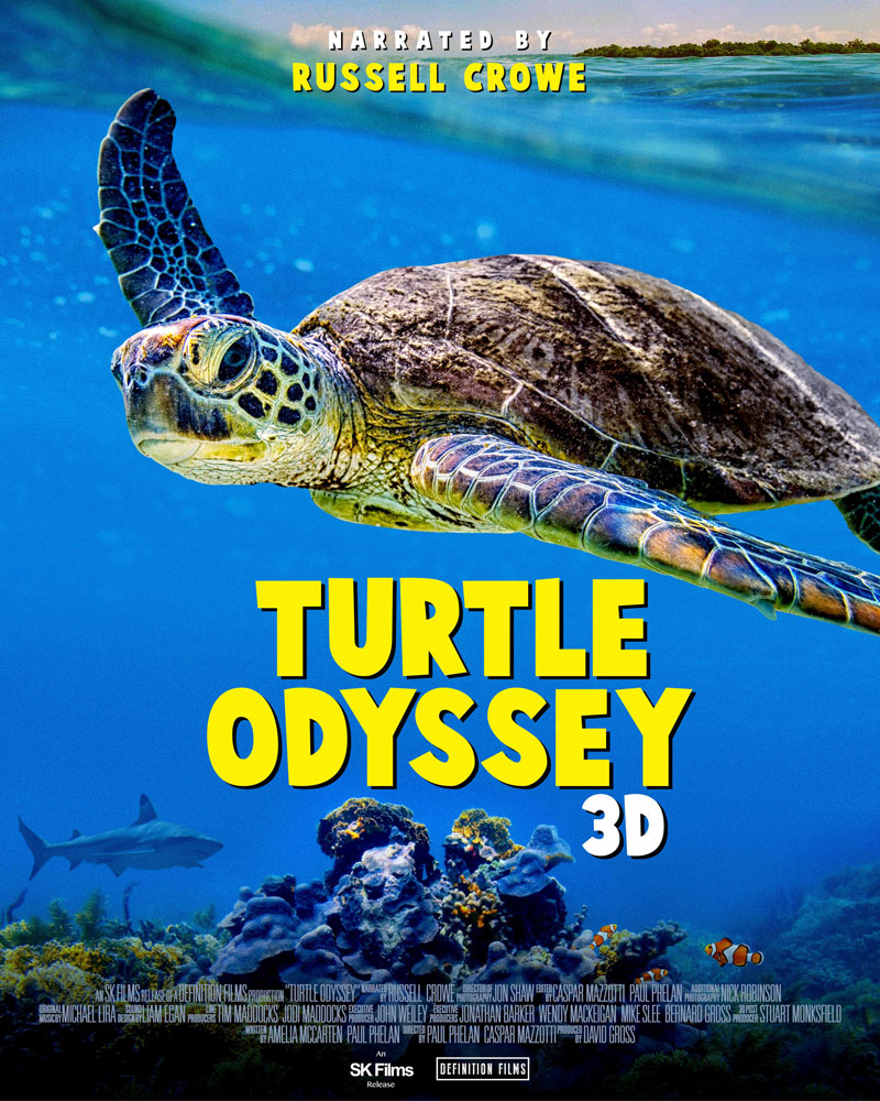 turtle-odyssey.jpg