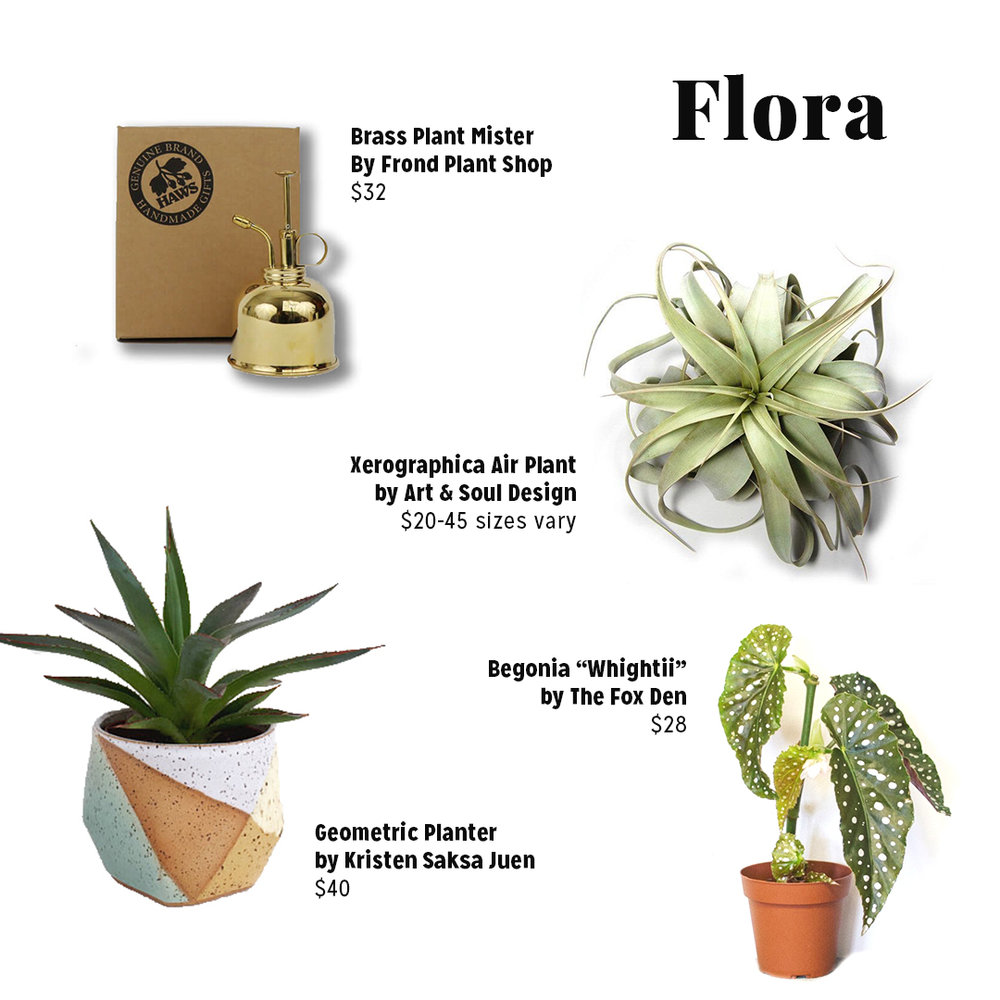 Product Links:  https://frondaustin.com/product/haws-brass-plant-mister/  https://www.etsy.com/shop/kristensaksajuen?ref=l2-shopheader-name  https://www.thefoxden.co/shop/plant-1-pb87n-fnm3r  Variety of Airplants available through our  online shop  or in store