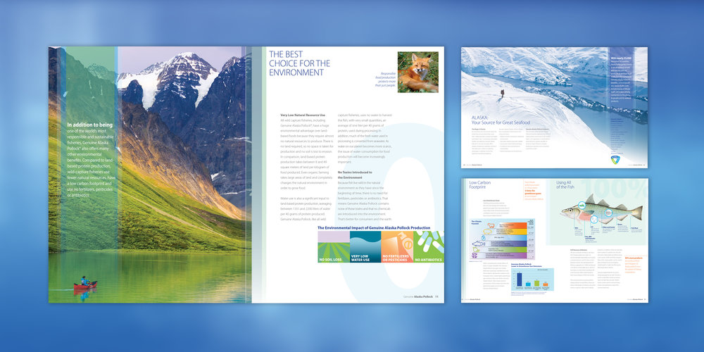2018-PRINT-GAPP-Brochure.jpg