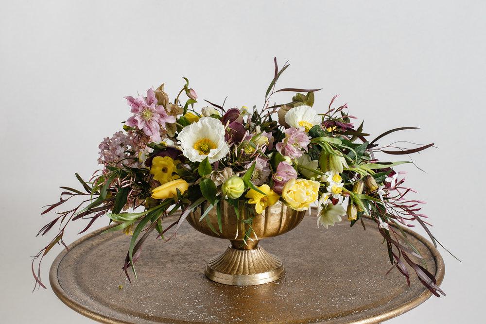 Flower Shots By Amy Bennett Photo_0007.JPG