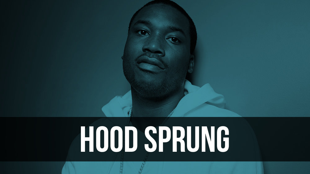Hood Sprung.jpg