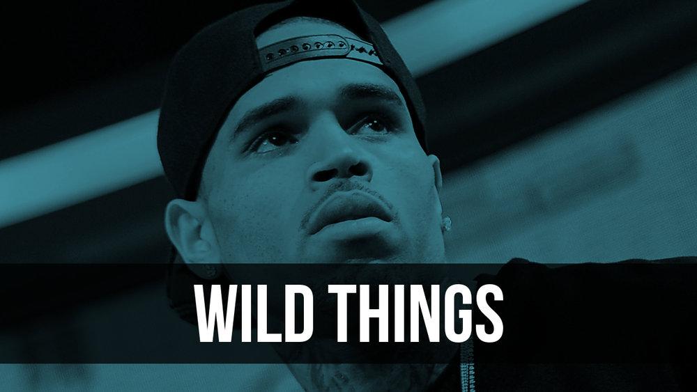Wild Things Image.jpg