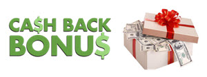 Cash back bonus horizontal resized.jpg