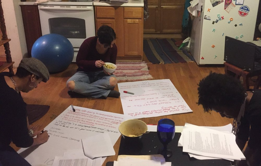 Committee work - Our small but mighty volunteer Development Committee cranked out some grant applications this winter and we have a growing list of fresh opportunities to write for. The Qualitative Committee (pictured here) began coding transcriptions from our 2017 interviews and sorting the data from almost 550 surveys.