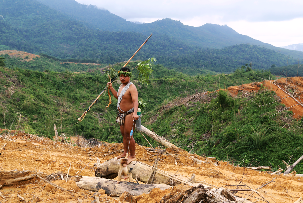 The curse of palm oil - Travel to the rainforest in Malaysia to see how the indigenous Orang Asli people are coping with deforestation caused to make way for oil palm trees, which produce the most used vegetable oil in the world.
