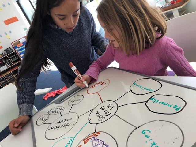 HS idea web.jpg