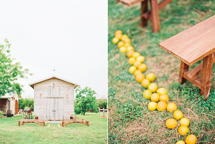 Michelle-March-Photography-Wedding-Photographer-Miami-Florida-Orlando-Horses-Farm-Vintage-Film-Citrus-Peonies-Barn-3-14