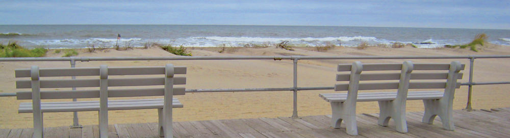memorial-bench.png