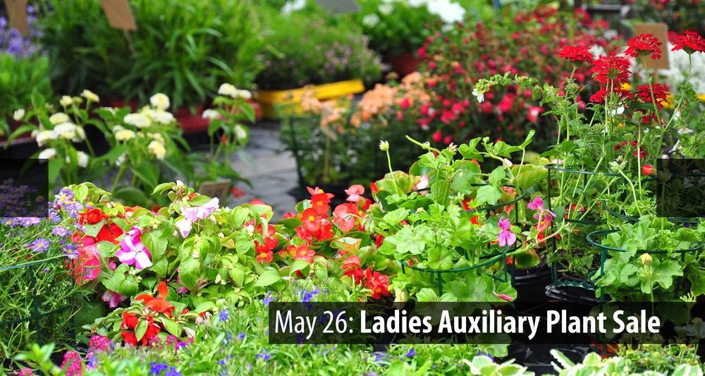 Ads 05.26 Plant Sale b.jpg