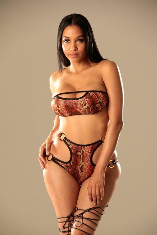 Stunning model posing in bikini