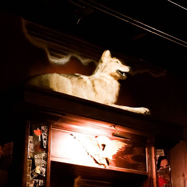 Where do we to hang? Of course The Crying Wolf! @thecryingwolfbar #nashville #wolf