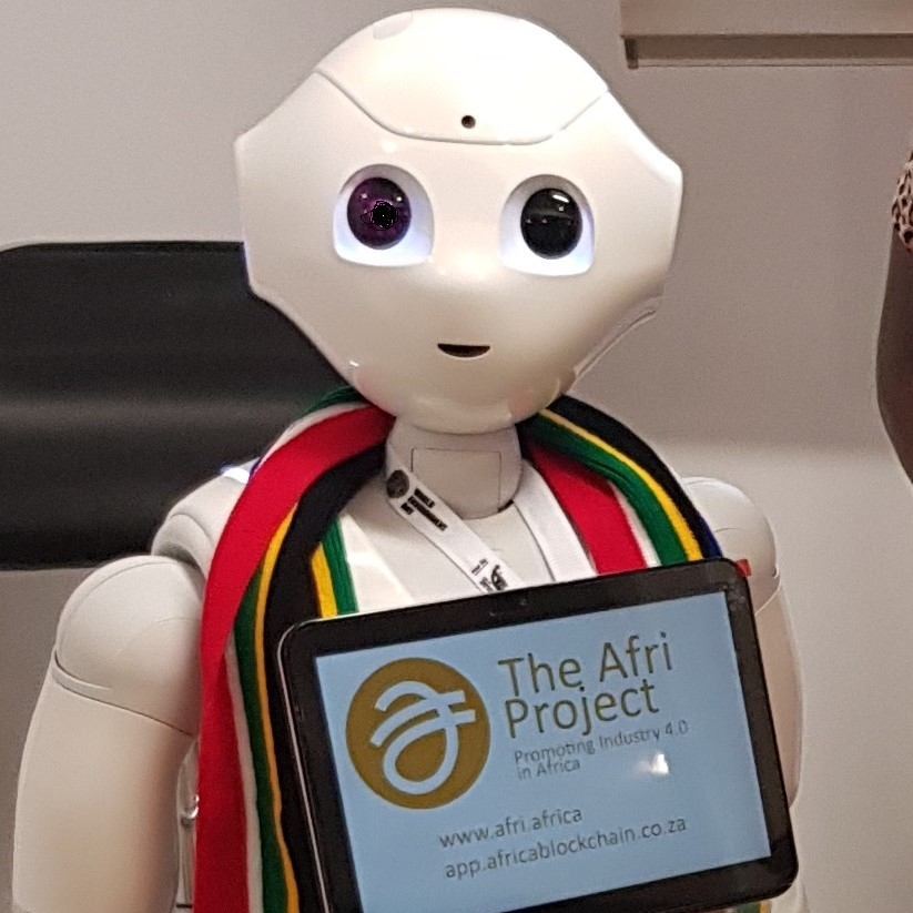 Deftech Pepper Robot  Spokes Robot for the Afri Project
