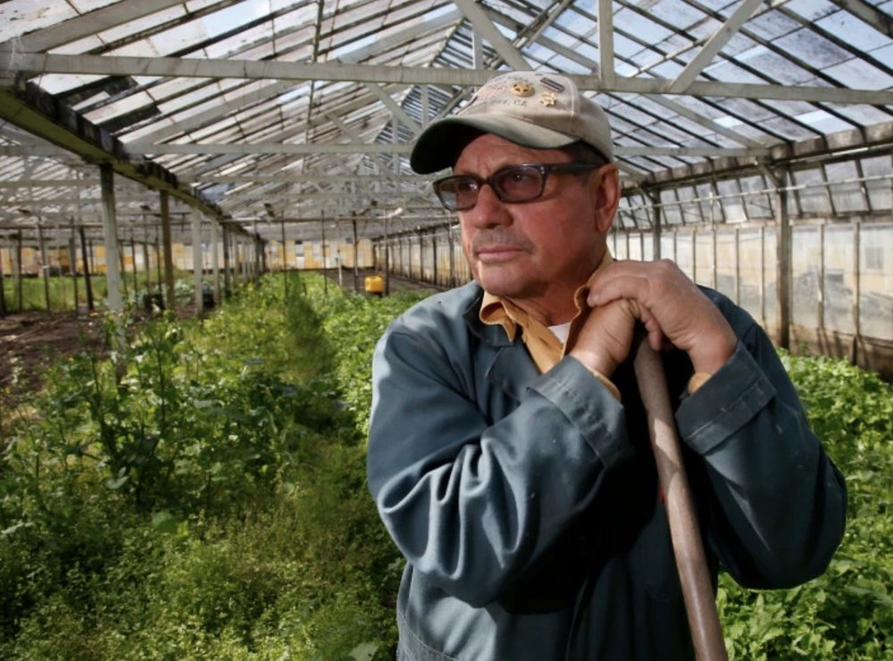 Farmer John in his Half Moon Bay nursery. (c) San Jose Mercury News, 2018 (Karl Mondon/Bay Area News Group)
