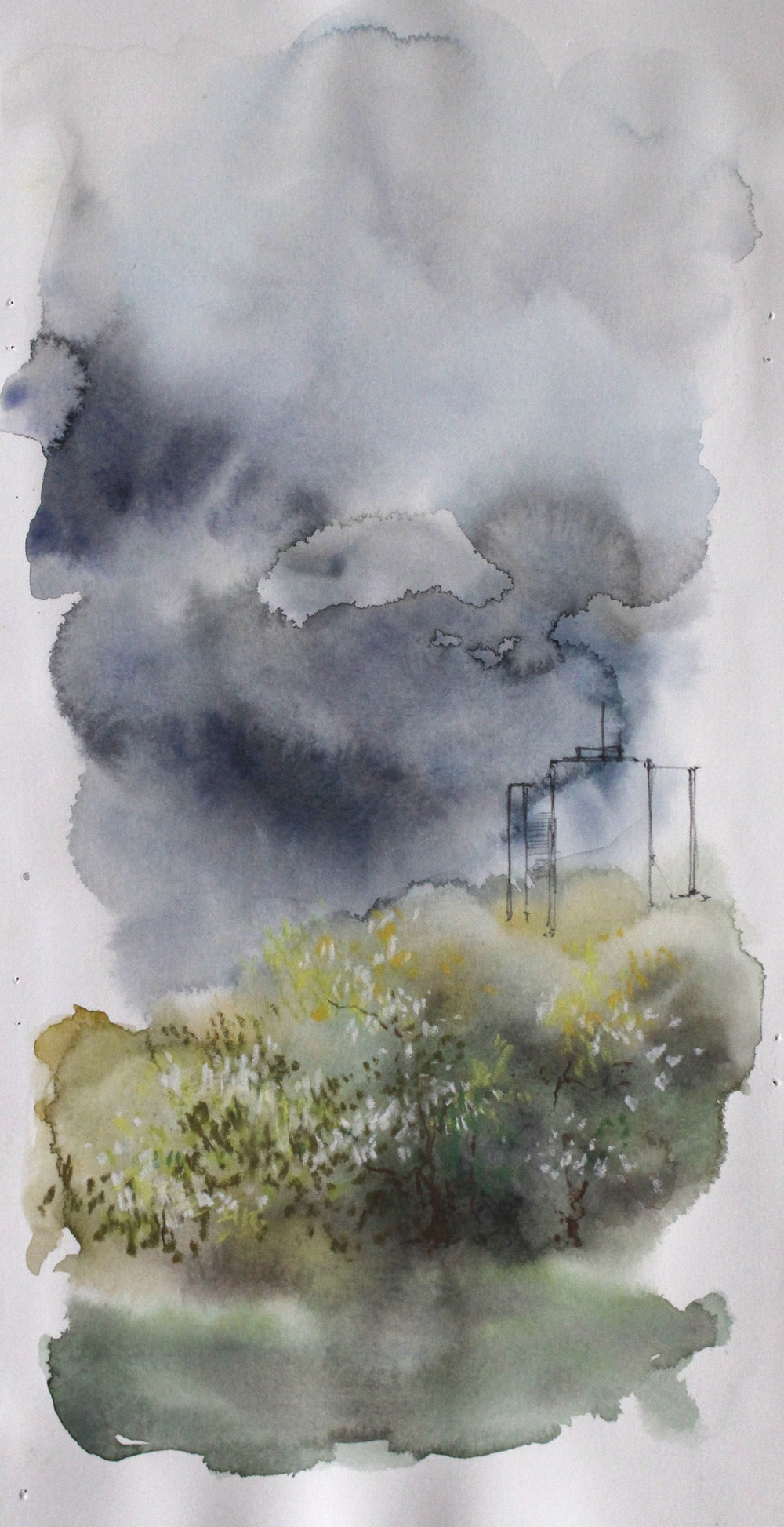 Observation 2010 watercolor