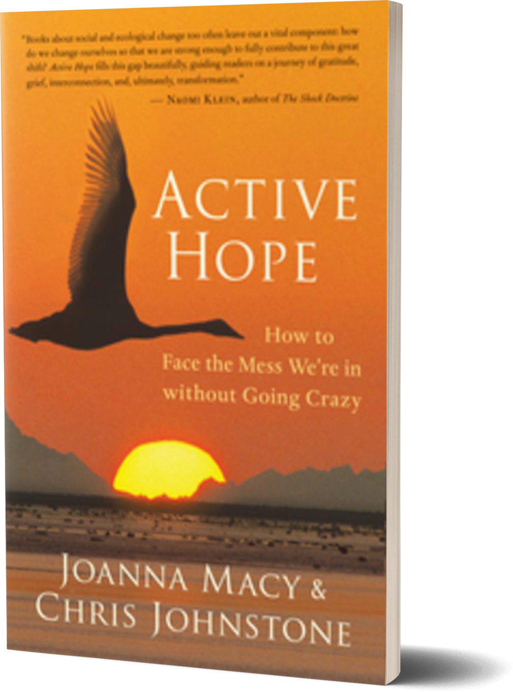 Active Hope- How to Face the Mess We're in without Going Crazy by Joanna Macy and Chris Johnstone.png