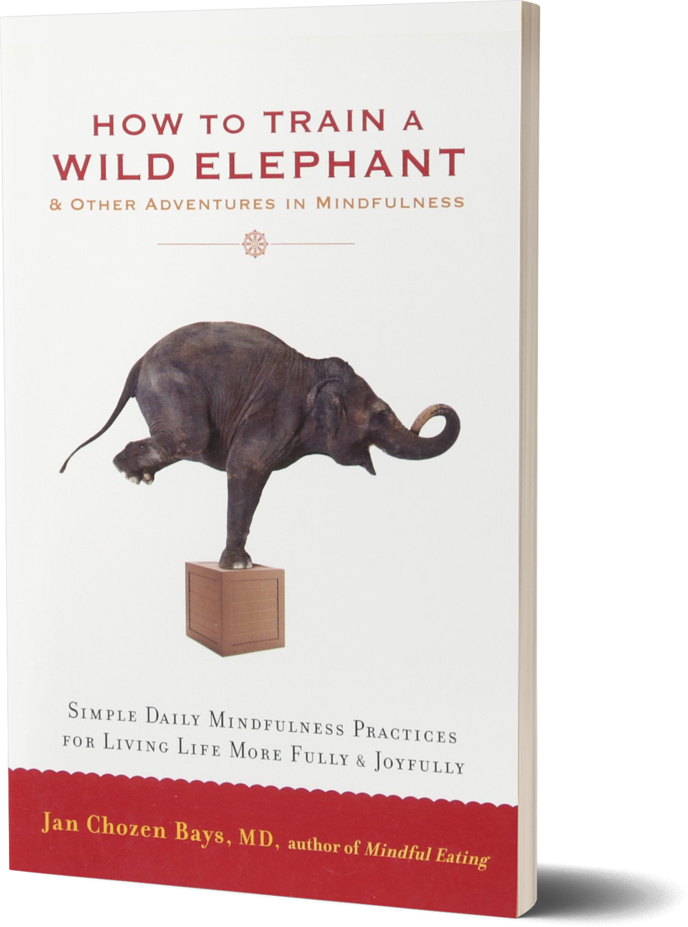How to Train a Wild Elephant- And Other Adventures in Mindfulness by Jan Chozen Bays.png