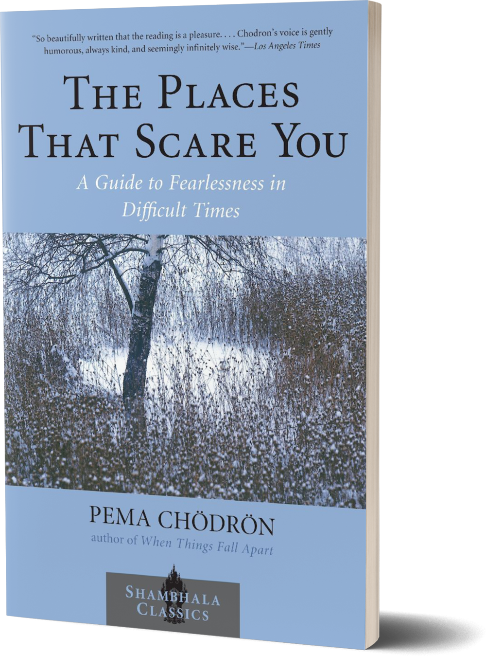 The Places that Scare You- A Guide to Fearlessness in Difficult Times by Pema Chodron.png