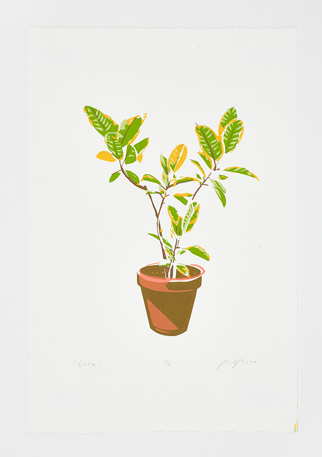 """Grow"" 2016"