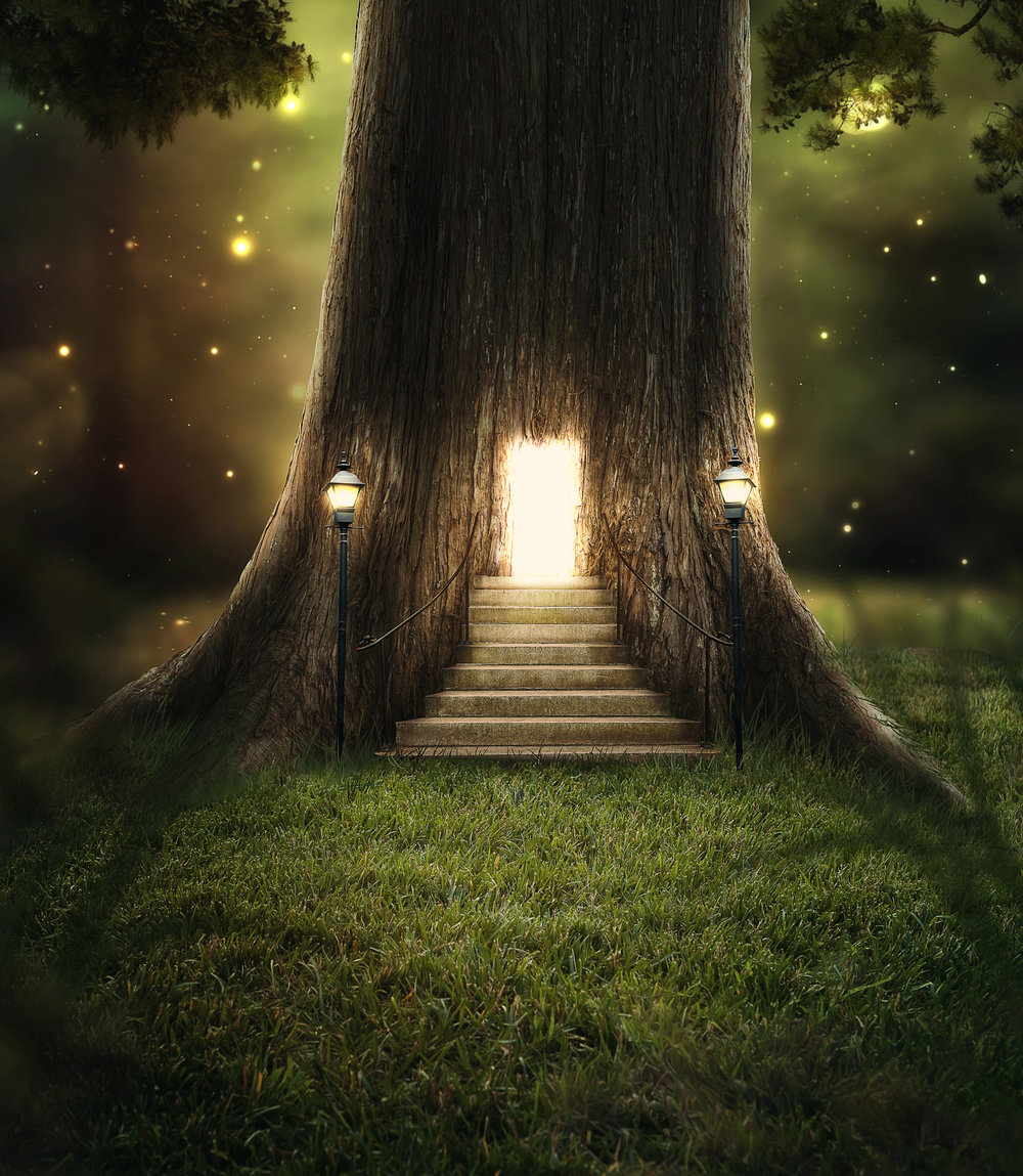 a-tree-in-the-forest-with-a-door-glowing-with-bright-lights_HoRzHntLDx.jpg
