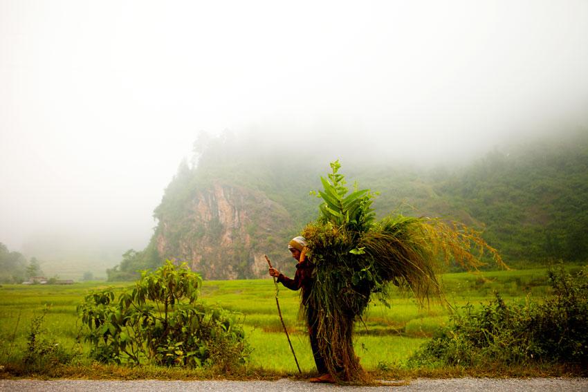 nepal-174_037.jpg