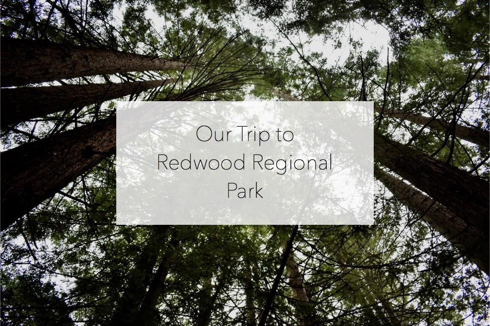 RedwoodRegionalPark