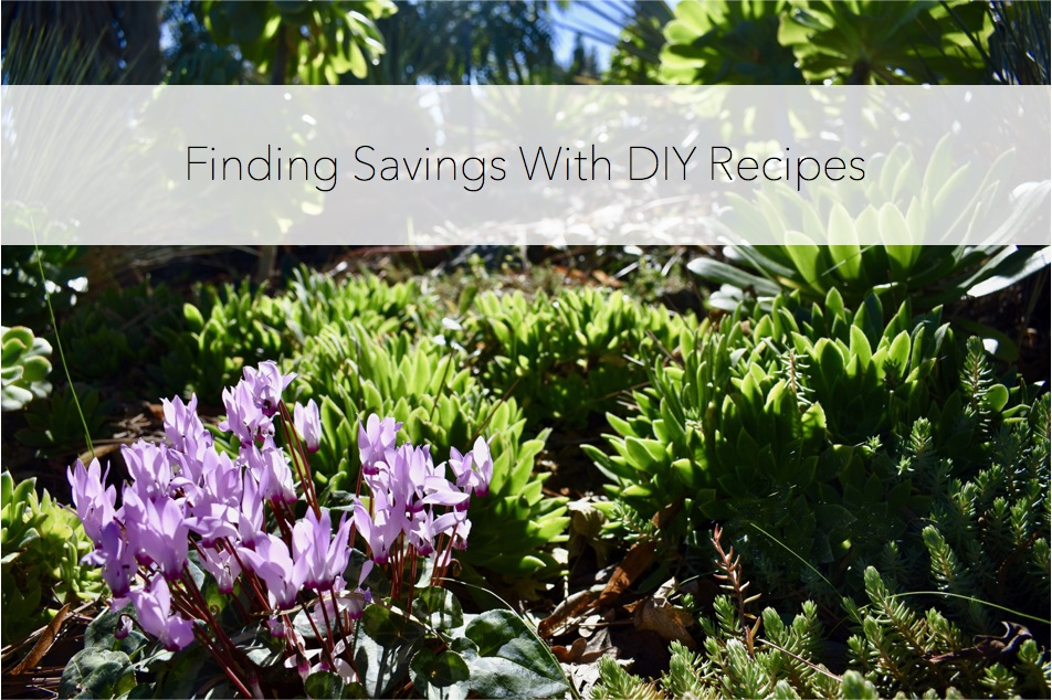 findingsavingsdiyrecipes