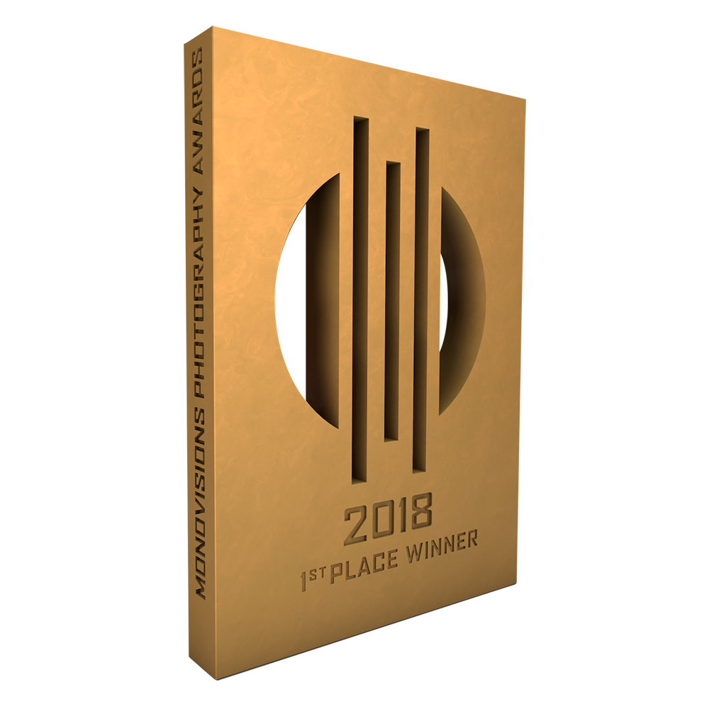 monovisions_awards_2018_1st_place.png