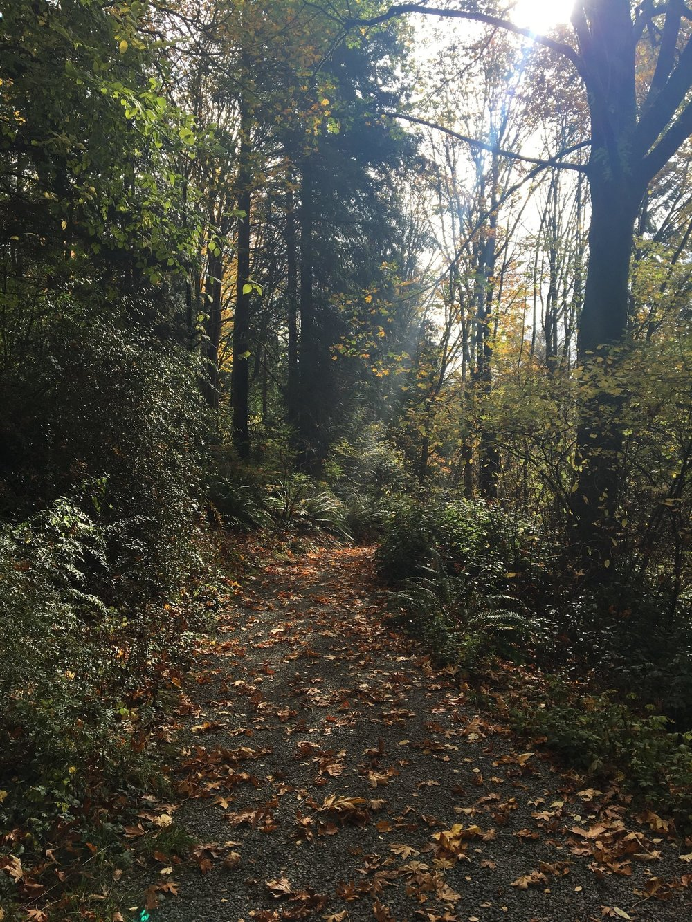 On the one dry day we had in Seattle, we visited the  Washington Park Arboretum . Given that it was a weekday, it was nice and quiet. Absolutely beautiful.