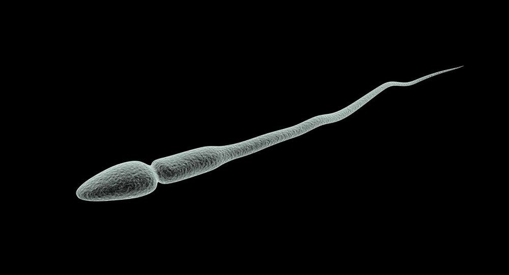 中國現在遭《紐約時報》批露連「精子」都要進行政治審查。圖片來源:TurboSquid