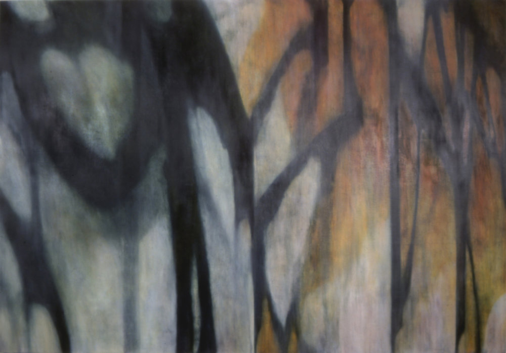 Shadow Cage, 2002, Oil, acrylic paint on canvas, 72 x 103 inches.