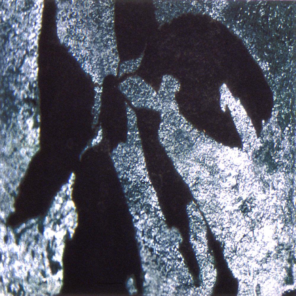 Vermont 3, 2002, Iris Digital print, 9 x 9 in. (on 30 x 23.5 in. Somerset Velvet Enhanced)