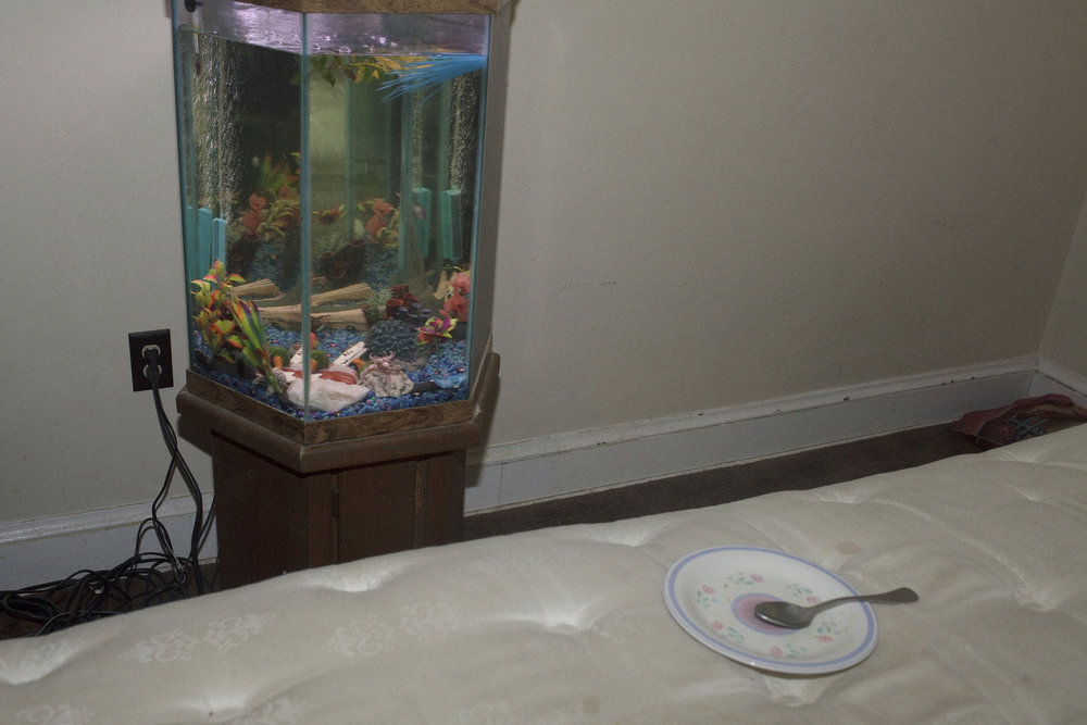 """Bones"" breeds fish in his apartment to sell to pet stores. His connection to the river is intertwined with his love of all things outdoor. A true urban outdoorsman, he fishes, hunts, breeds fish, and even has a turtle. December, 2012"