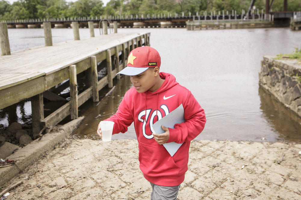 A student returns after releasing American shad fry into the Anacostia River. In 2017, D.C. mayor Muriel Bowser declared American shad the official fish of Washington, D.C. Though the Potomac is fully restored, American shad in the Anacostia are not.