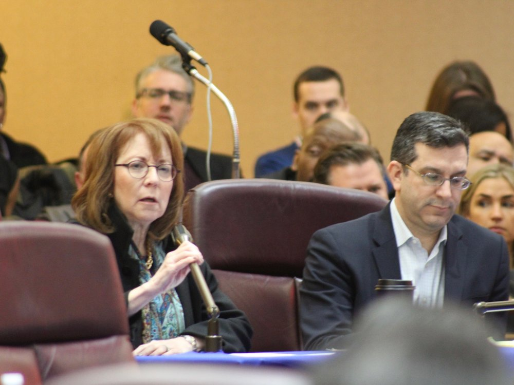 Aldermen Michele Smith and Scott Waguespack led the calls to delay approval for Lincoln Yards. (One Illinois/Ted Cox)