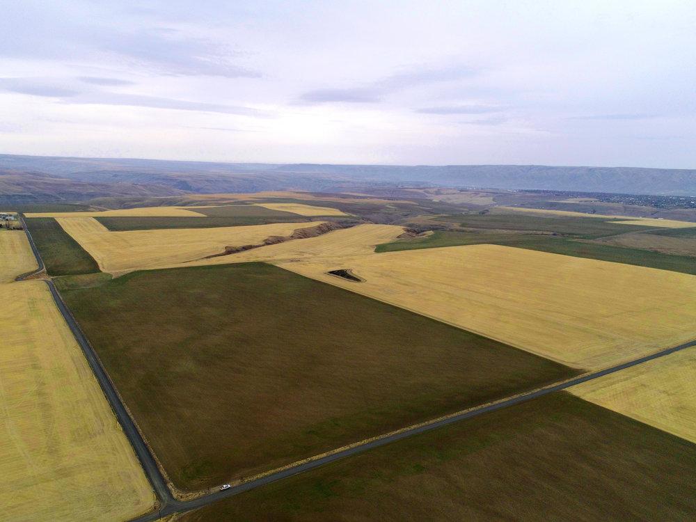 Lewiston Farm 1.jpg
