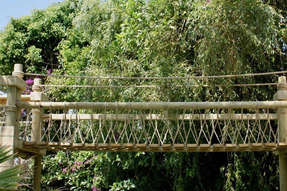 Fixed-beam Rope Bridge in trees
