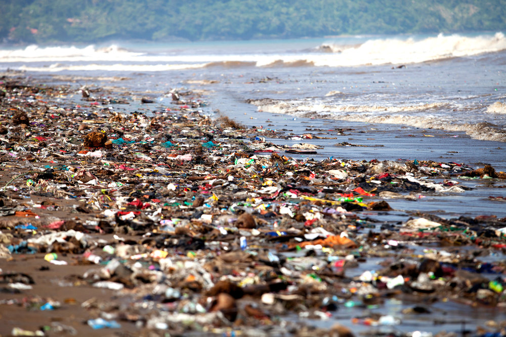 213736-2121x1414-pollutedshore.jpg