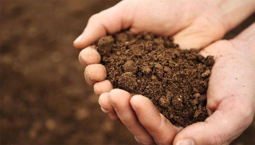 soil875x500px.jpg