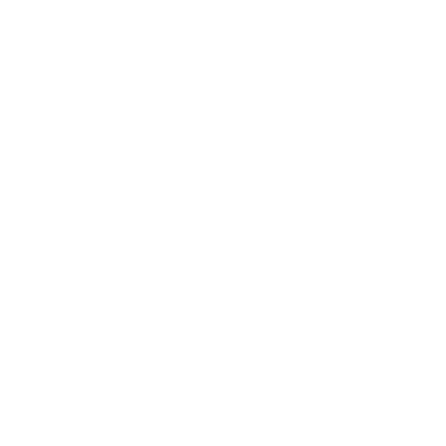 Ronin Fight Team (Ronin Services L.L.C.)