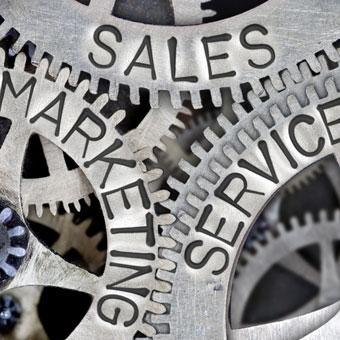 Marketing & Promotion -