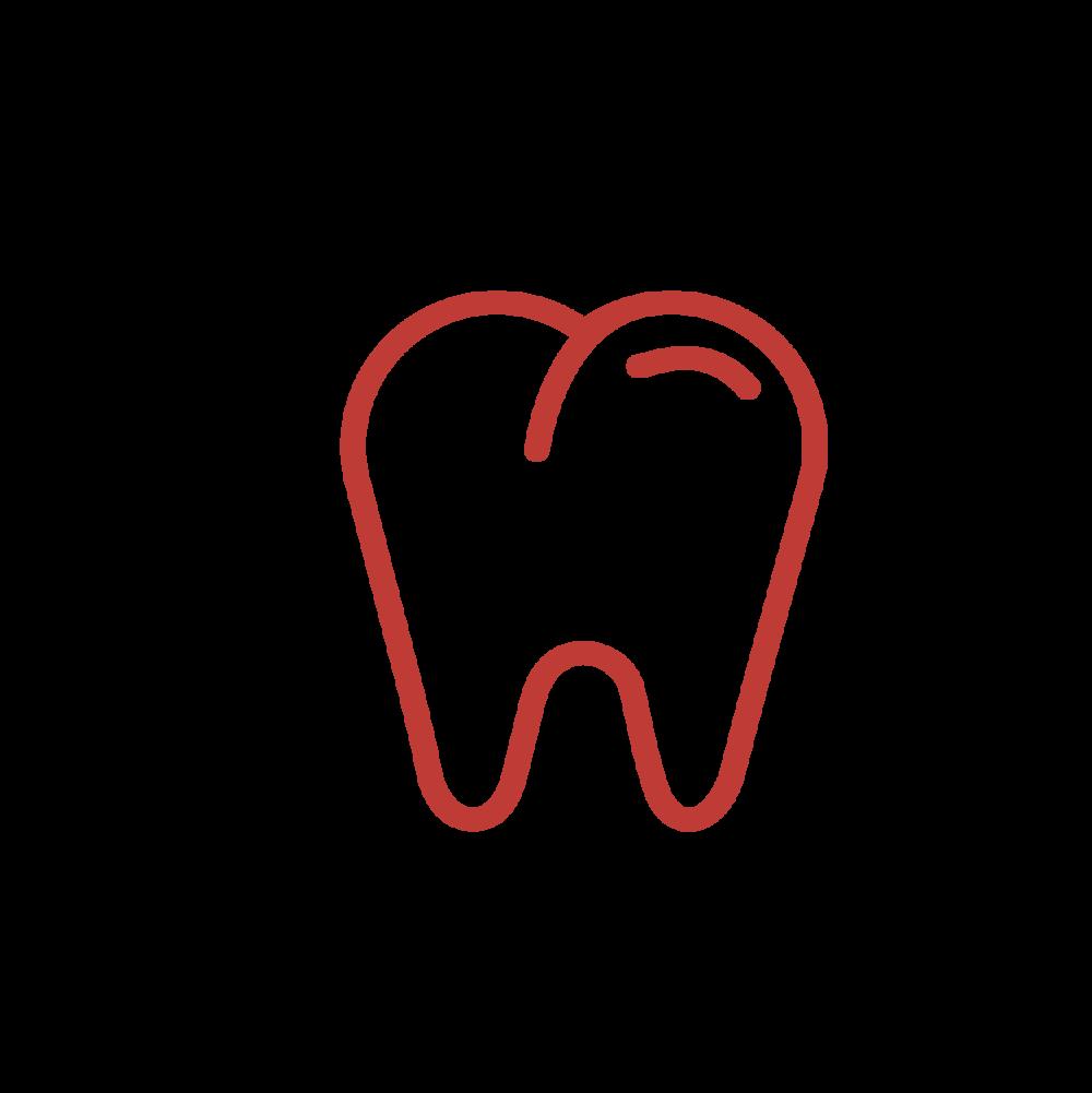 Dental Insurance -