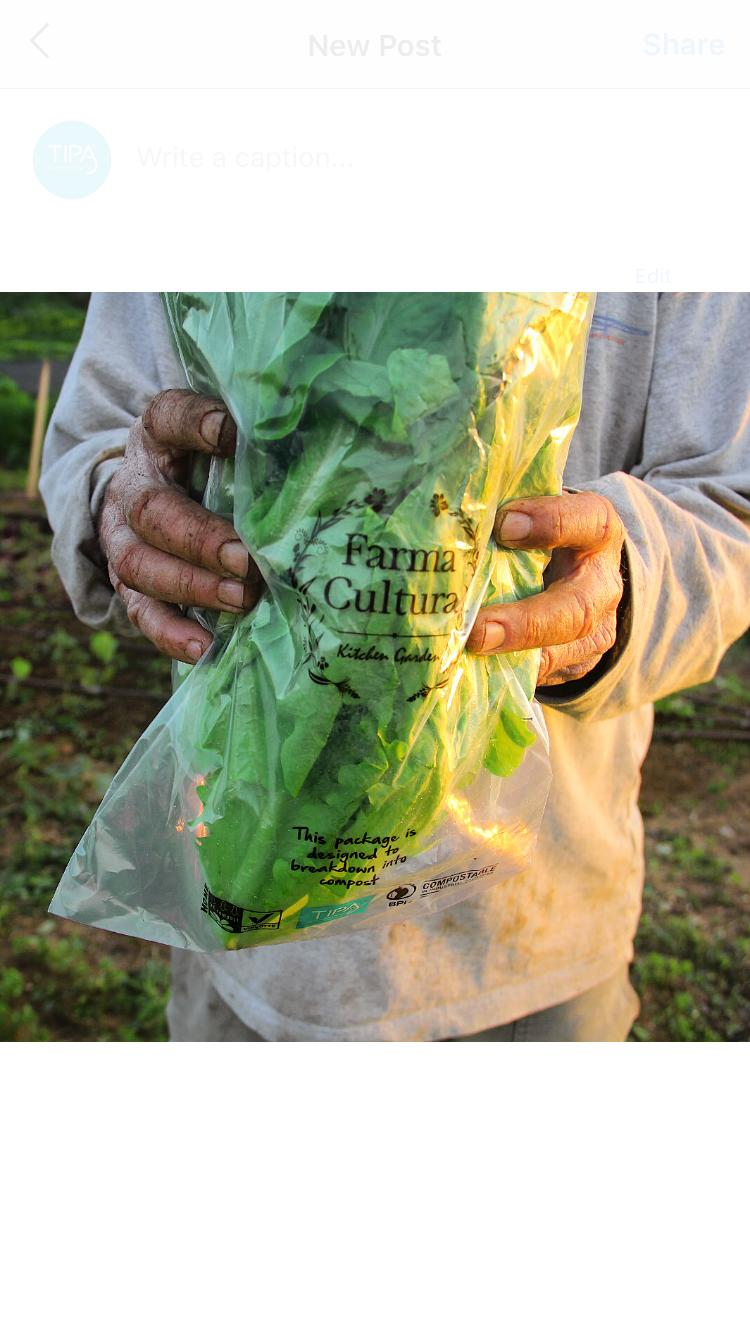 Produce - Farma Cultura.jpeg