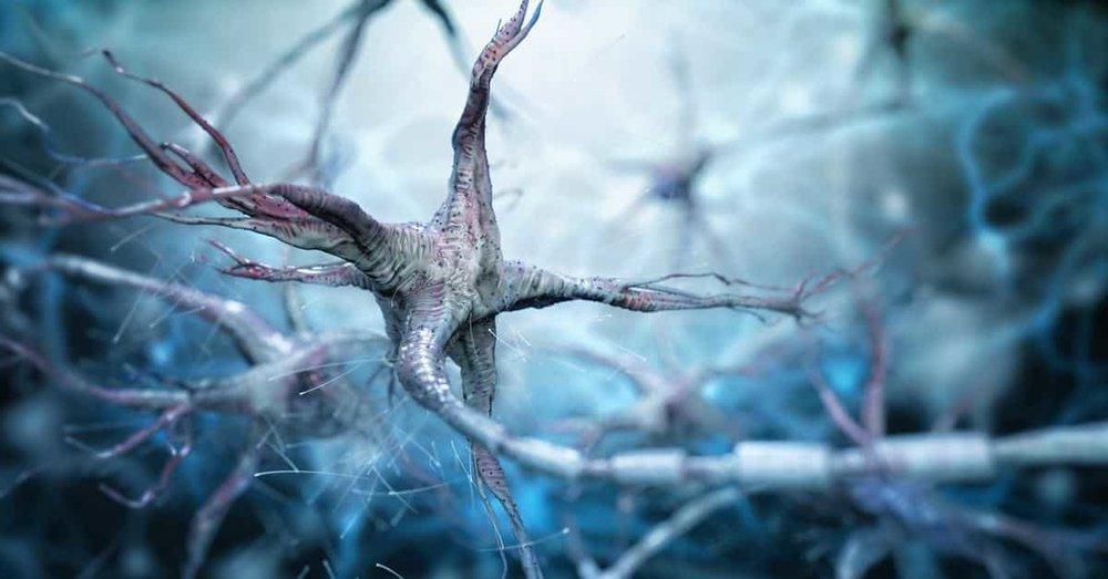 alzheimers-nerve-cells.jpg