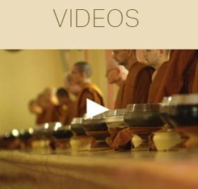 homepage-videos-300w.jpg